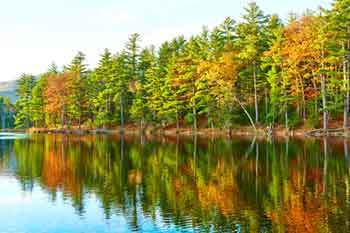 New Hampshire Game Warden Requirements